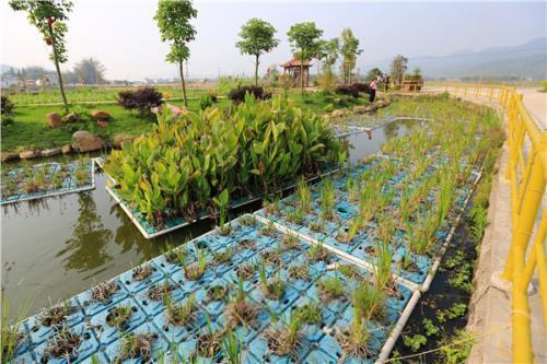 农村水环境治理